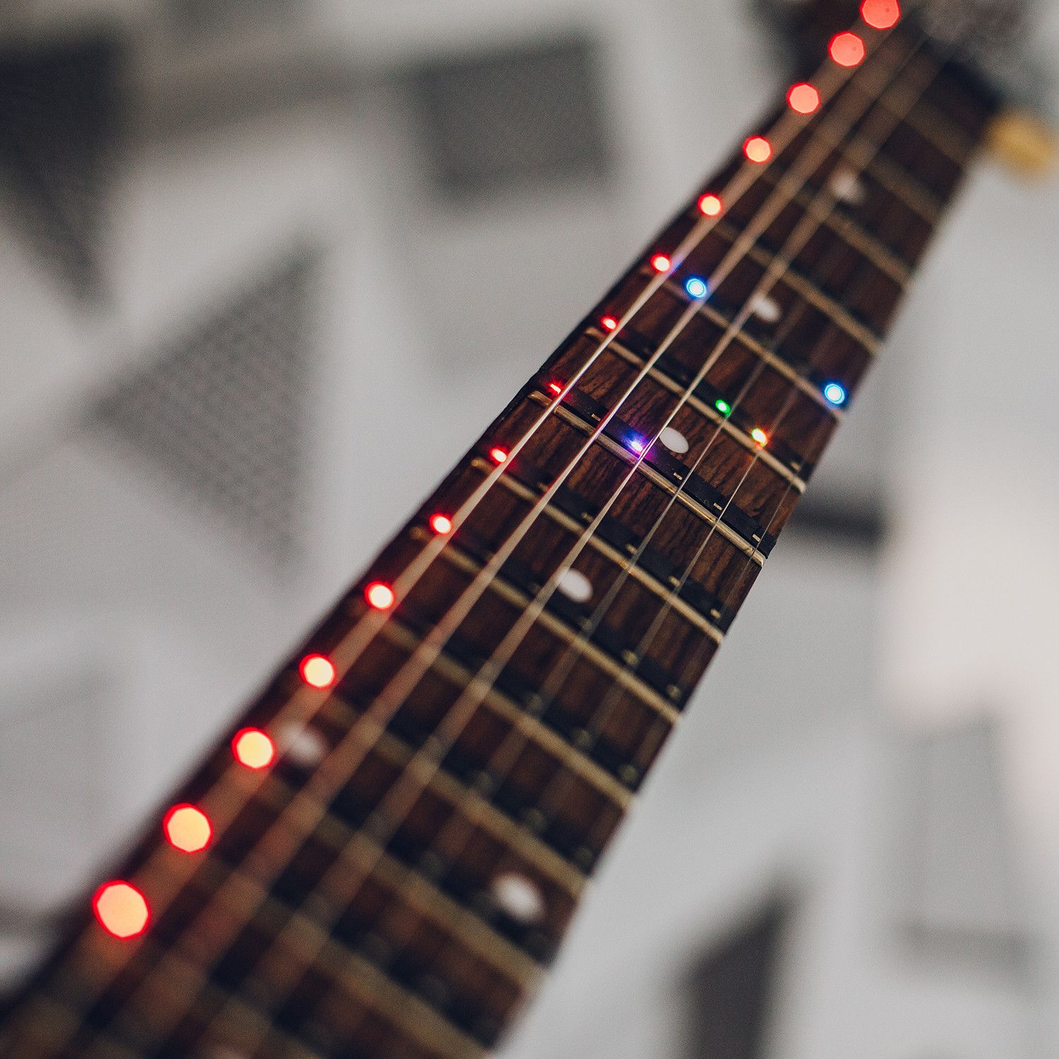 """Fret Zealot // 25.5"""" Scale Length and Up Guitar, Guitar"""