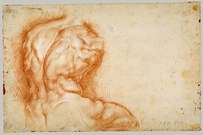 Rubens - Cast drawing of 'Belvedere Torso,' a 1st century sculpture. Cast drawing is the practice of rendering a 3-dimensional sculpture or plaster cast from observation.