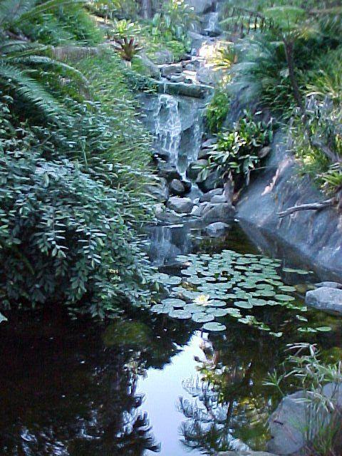 e50d6968f471c67fcc18967363f4c938 - San Diego Botanical Gardens Free Tuesday