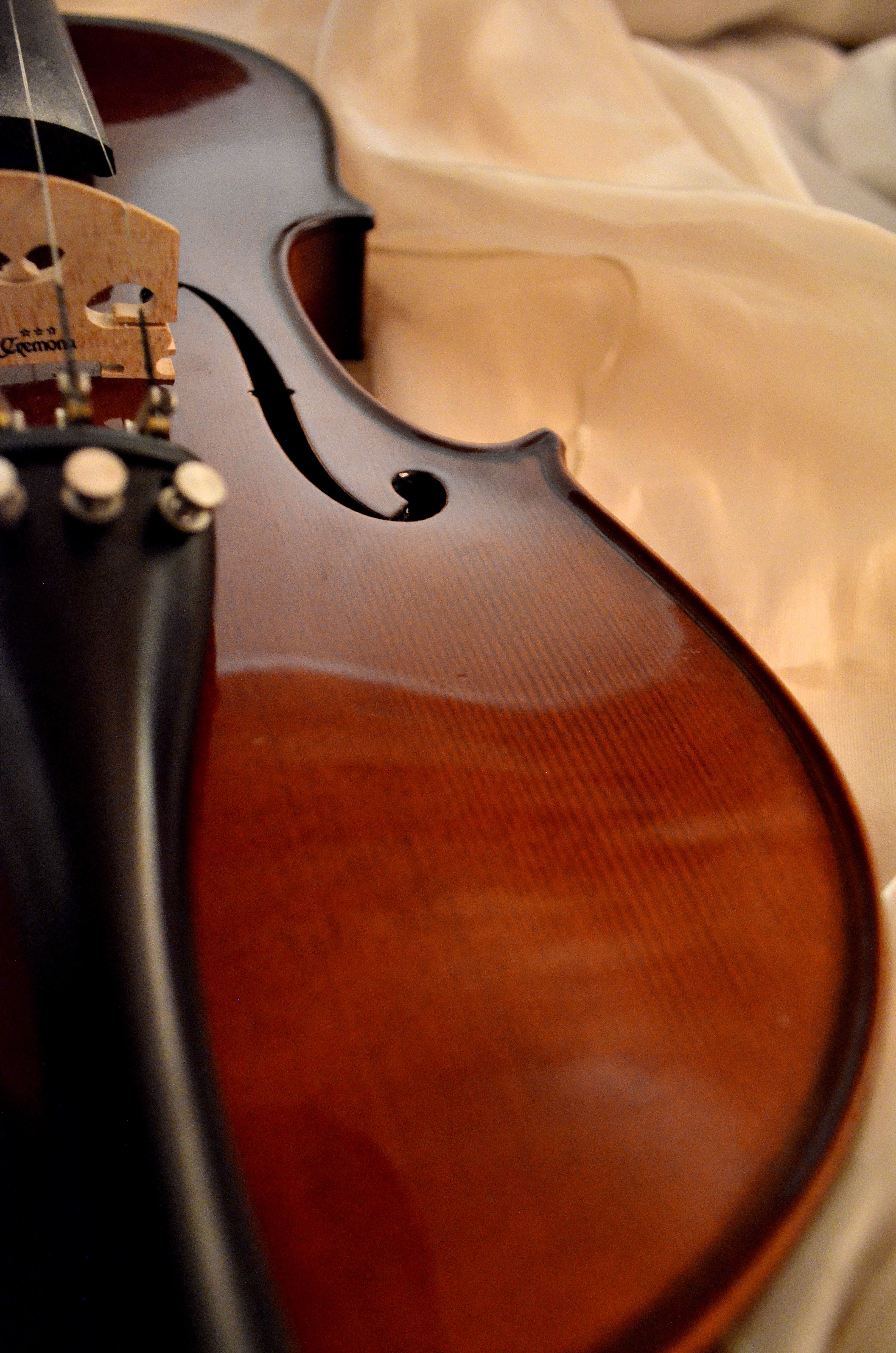 """The violins so beautifully made were quite exceptional Your craftsmanship is positively amazing "" Charles Avsharian"