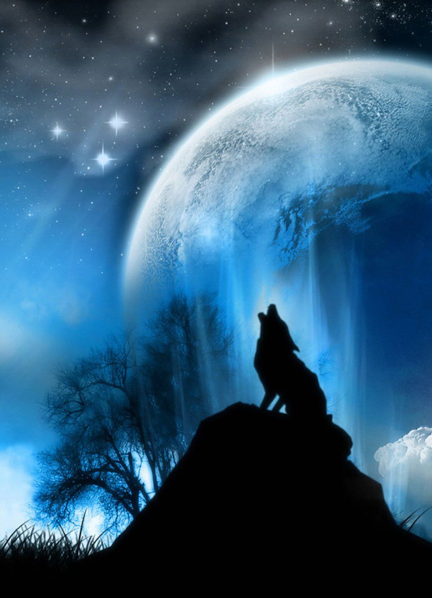 wolf howling at the moon | Painting ideas | Pinterest ...