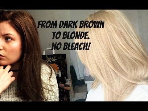 How To Go From Dark Brown To Blonde No Bleach No Damage Dyed
