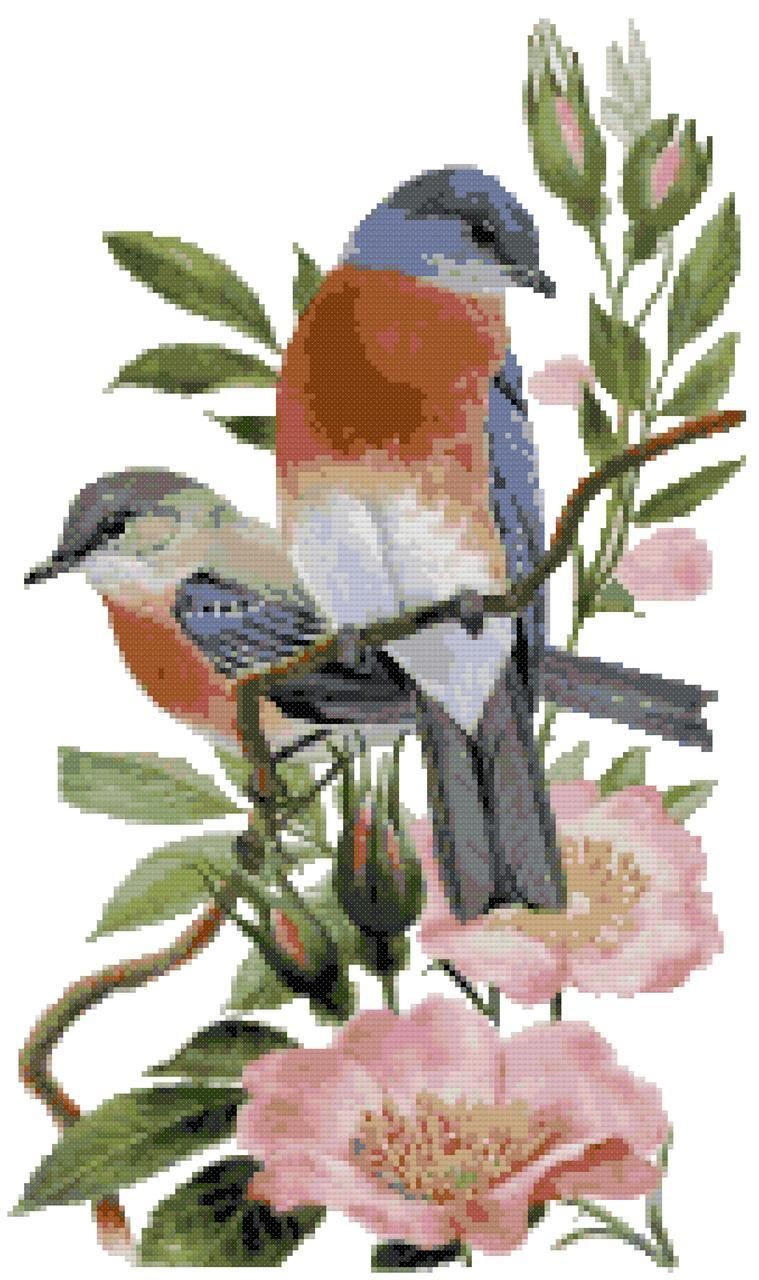 New York State Bird and Flower Eastern Bluebird and Rose