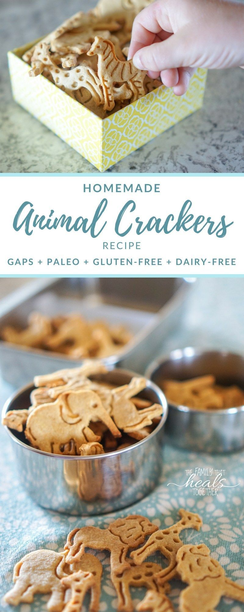 and Paleo Diets Animal Cracker Recipe for Paleo & GAPS Diet | Gluten-Free, Grain-Free, Dairy-Free, and Low Carb | The Family That Heals TogetherAnimal Cracker Recipe for Paleo & GAPS Diet | Gluten-Free, Grain-Free, Dairy-Free, and Low Carb | The Family That Heals Together