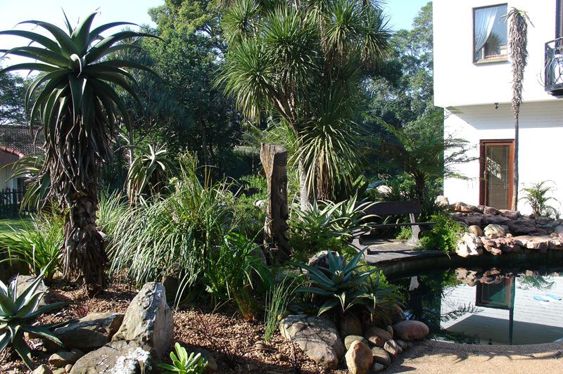 Rock Garden Garden Design In Durban KZN South Africa Gardening Pinte