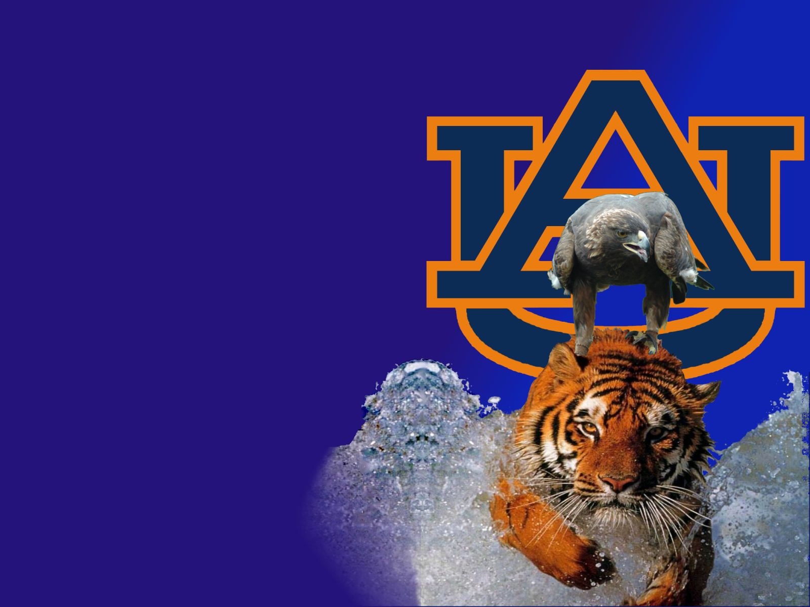 Index Of Miracle Austuff Auburn Graphics Auburn Tigers Football Auburn Tigers Tiger Football