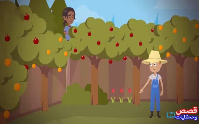 قصص هادفة للطلاب بعنوان الغريب في الحديقة ذات مرة كان هناك رجل لديه حديقة كبيرة كان ذلك الرجل يزرع العديد من الأشجار المثمرة ويرعاهم حتى تؤتي Baby Mobile Baby