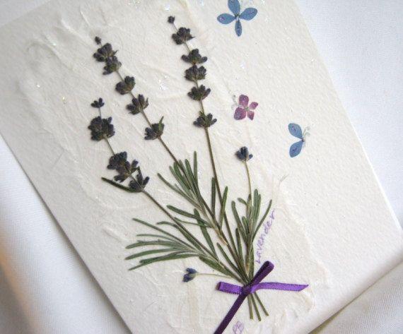 Пейзажами, открытка с семенами цветов