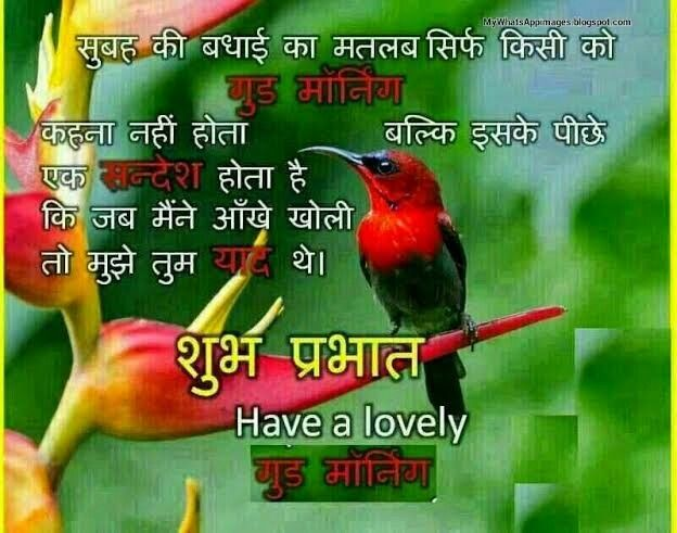 Pin By Ishrat Jahan On Good Morning Good Morning Images Good Morning Beautiful Pictures Sweet Good Morning Images