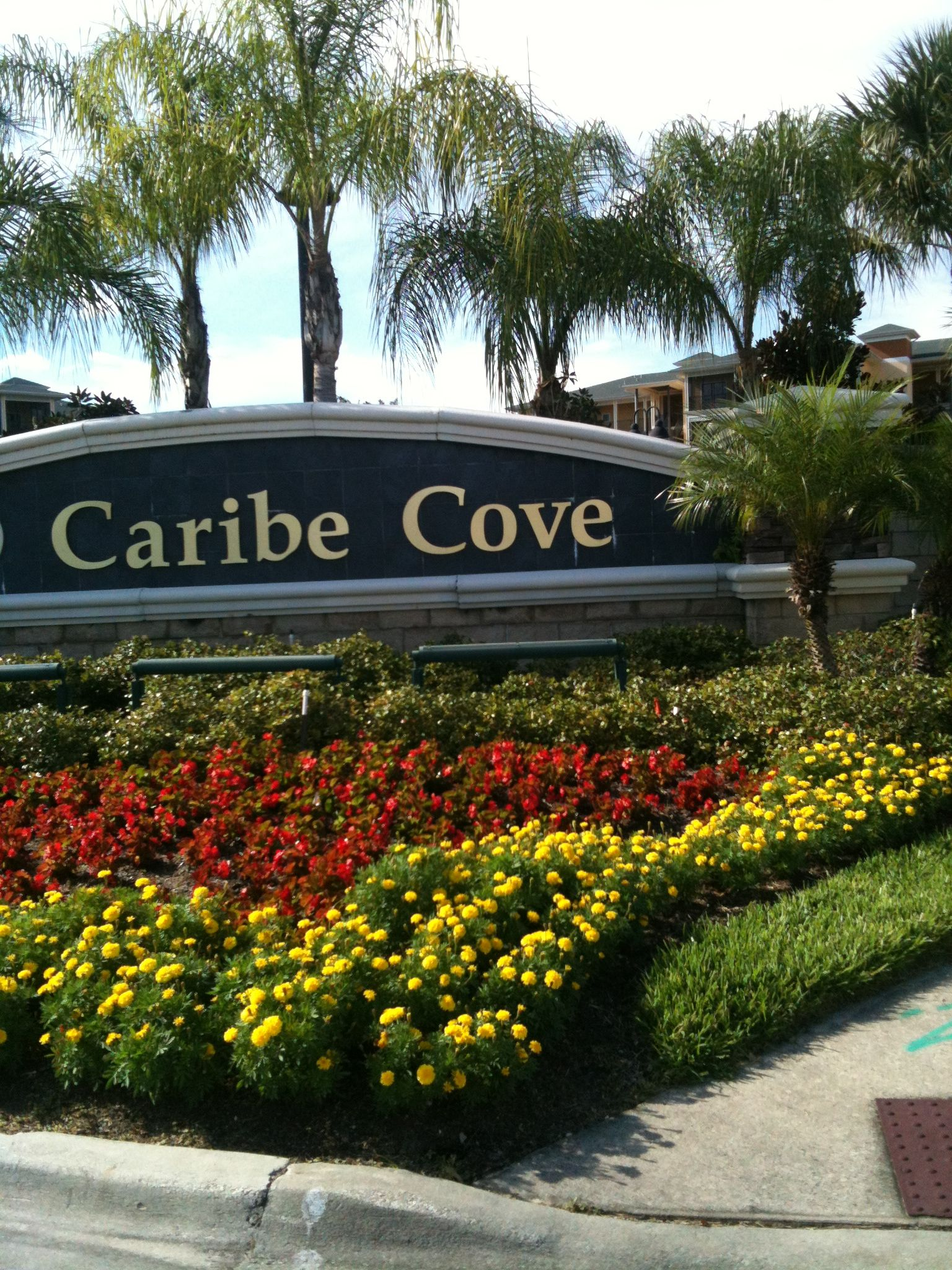 Caribe Cove  Florida  Landscape Orlando resorts Florida