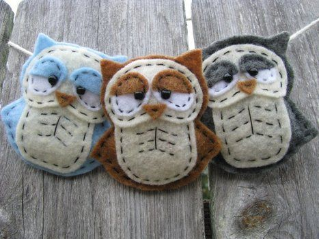 Owls - their eyes remind me of sylvester stallone!