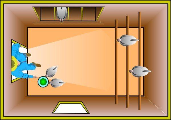 Plan D Amenagement Interieur D Un Poulailler Poulailler Interieur Poulailler Poulailler Palette