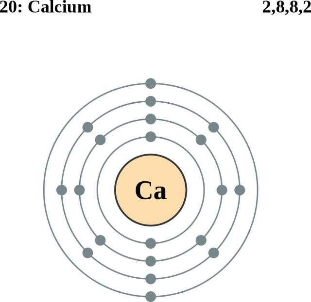 bohr diagram for calcium atom atom diagram for calcium see the electron configuration of atoms of the elements ... #1