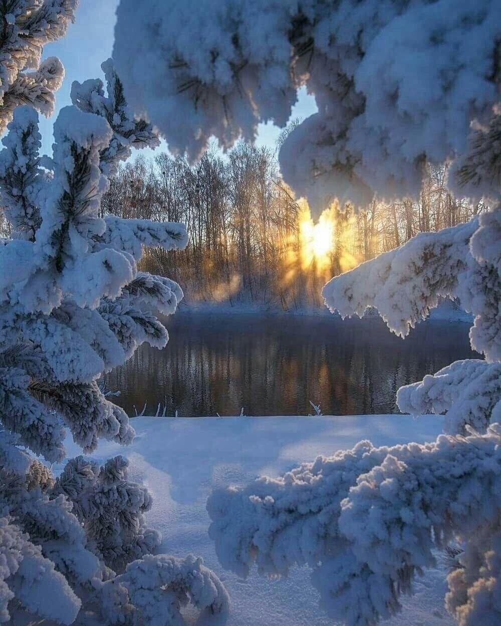 стол природа фотографии зимних пейзажей значек легионера