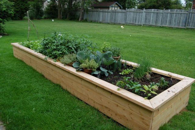 So gonna make one of these for our little veggie garden ...
