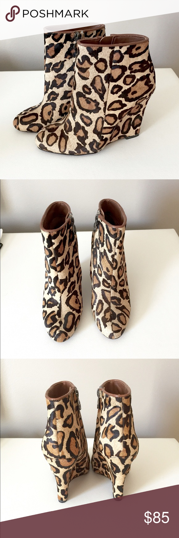 Leopard Calf Hair Wedge Bootie NWT $130 Brand new! Wilma Booties with 4 inch height. Genuine calf hair and still in box! NO TRADES don't ask. Listed on merc for less and free shipping Sam Edelman Shoes Ankle Boots & Booties