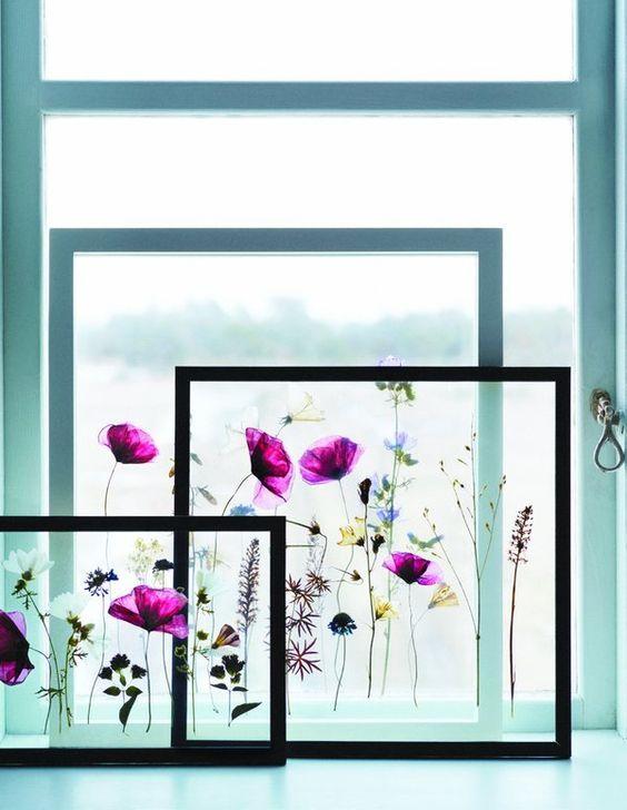 DIY Framed Pressed Flowers – Issuu
