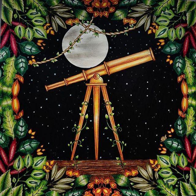 Telescope Enchanted Forest Johanna BasfordColoring BooksAdult