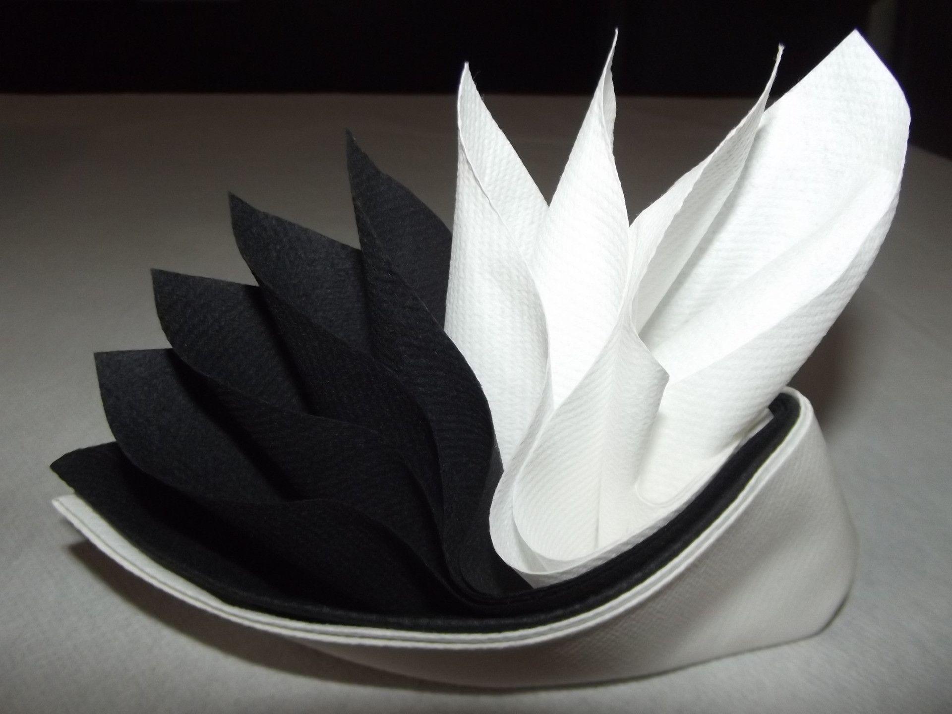 Pliage De Serviette En Papier 2 Couleurs Papillon Galerie Et