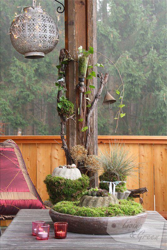 Früchte Samen Moos November Im Garten Gartendekoration