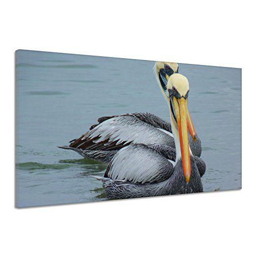Pelikane Wasser Vogel Natur Tier Schnabel Leinwand Poster Druck Bild