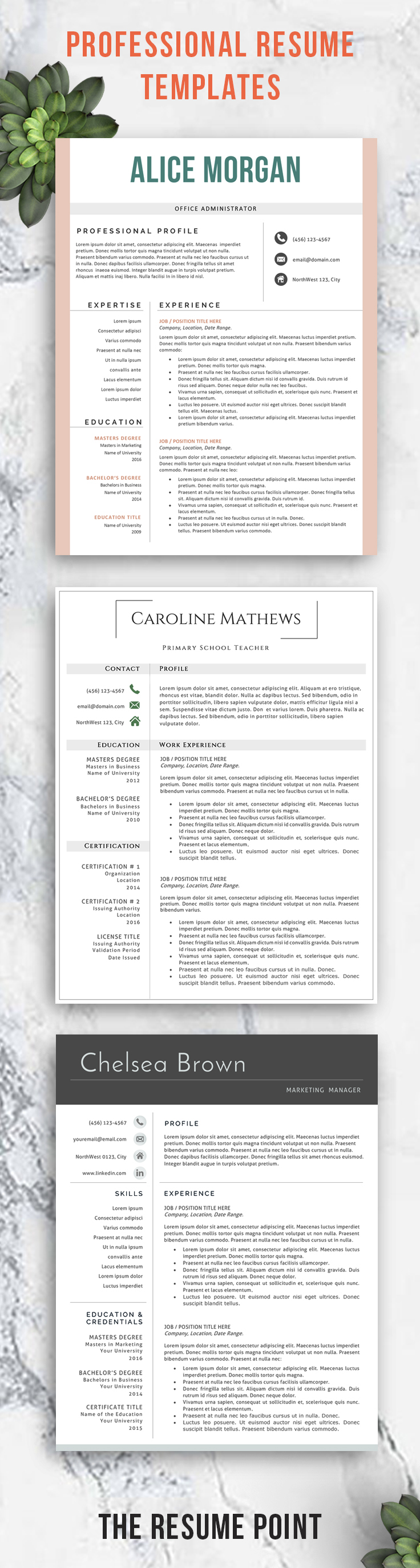 Resume Template For Professionals Easily Editable In Microsoft Word