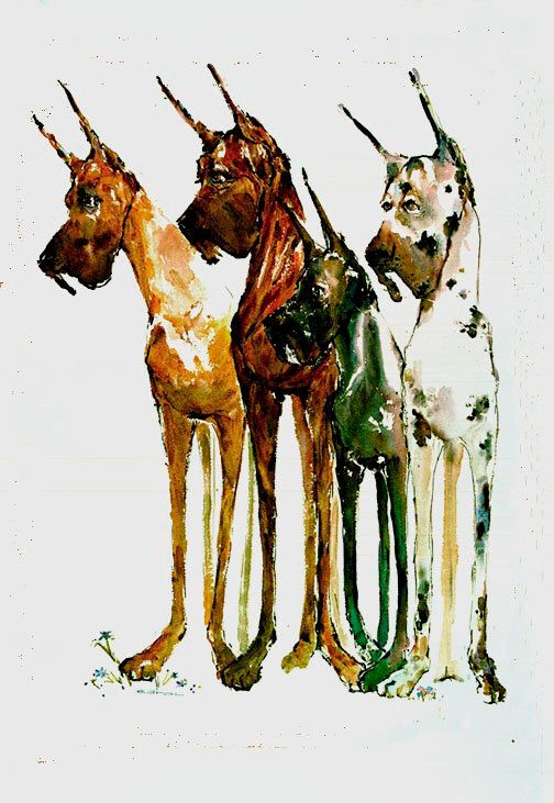 Great Dane-Board Of Directors-Watercolor dog print SIGNED by the Artist Carol Ratafia DOUBLE MATTED to 16x20 by ratafia on Etsy https://www.etsy.com/listing/115773734/great-dane-board-of-directors-watercolor