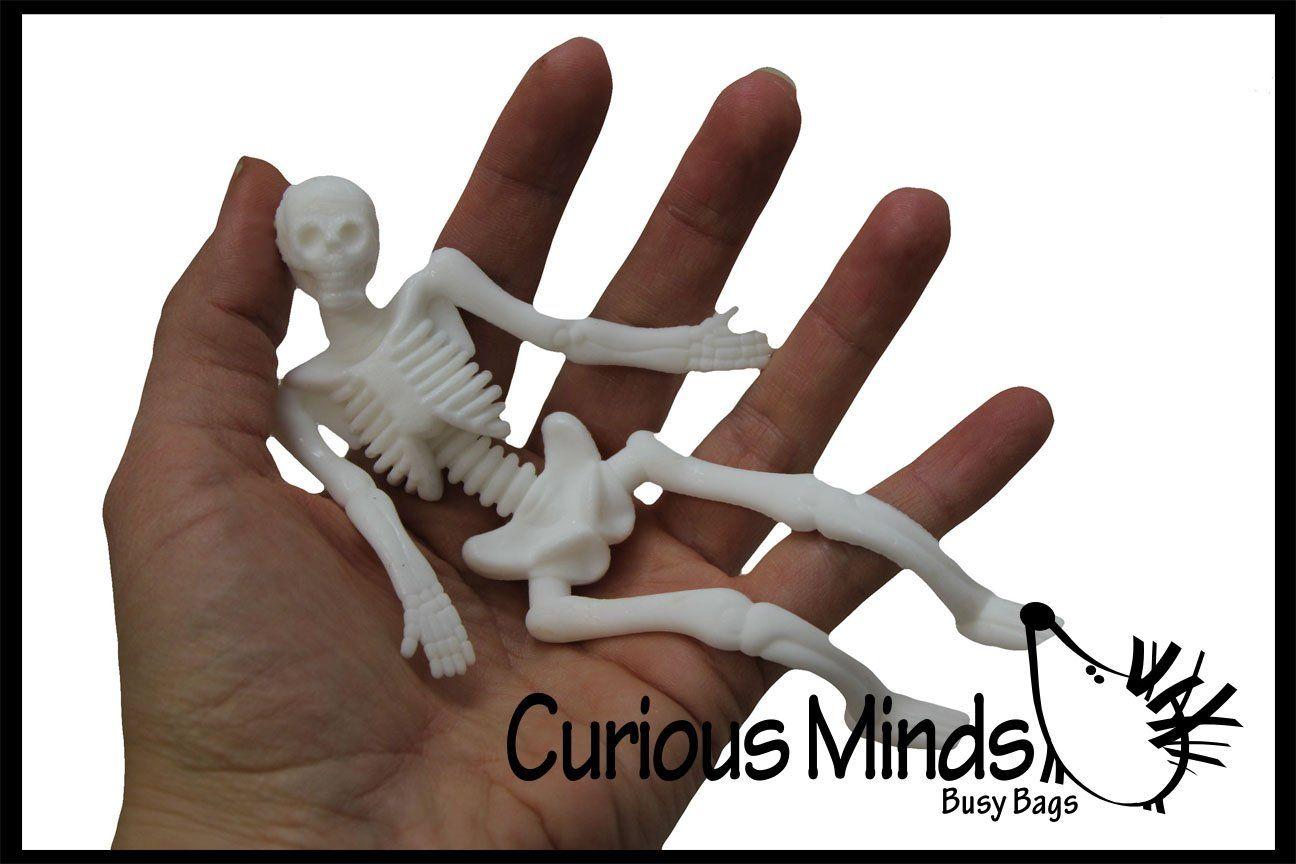 Stretchy Skeleton Fidgets Anatomy Fidget Toys Halloween Kids Pet Toys