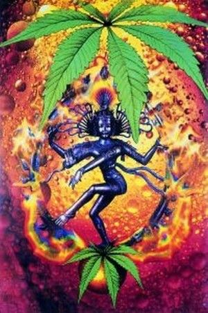 Cannabis & Spirituality  We have a cool selection of buds! http://www.herbalaffiliateprogram.com/herbalsmokeshop/aff_manager/newaff/redirect.cfm/i/2014089807
