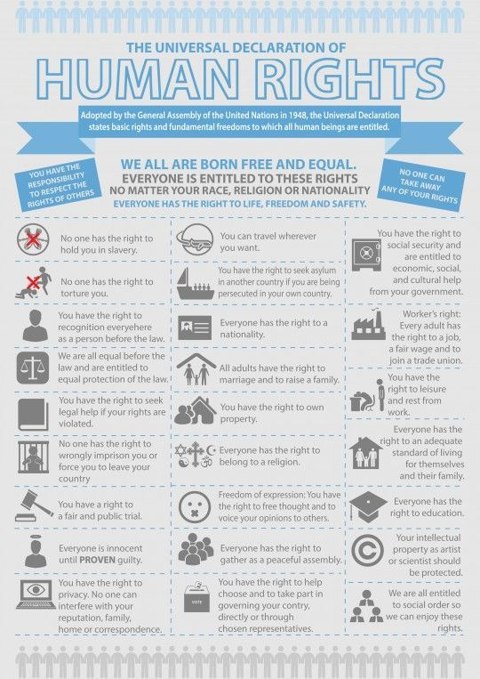 infographic universal declaration of human rights social studies International Human Rights Law universal declaration of human rights