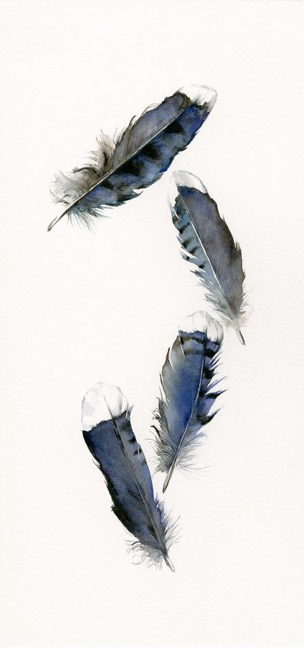 Feather Painting Print Watercolor Feathers Feather Art Blue
