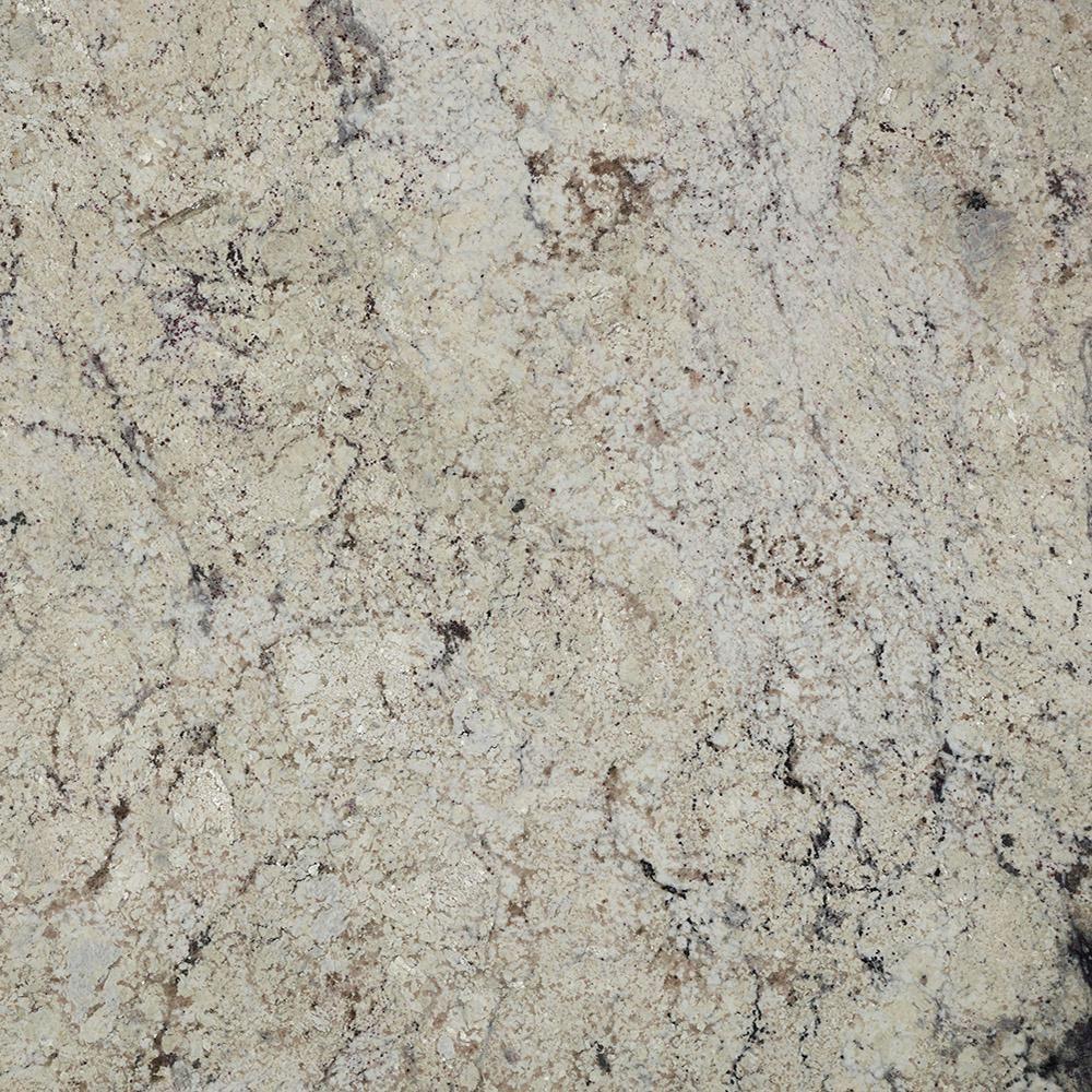 Stonemark 3 In X 3 In Granite Countertop Sample In Bianco Antico