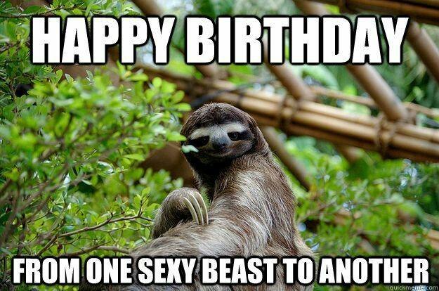 Happy Happy Birthday With Images Sloth Sloth Meme Funny