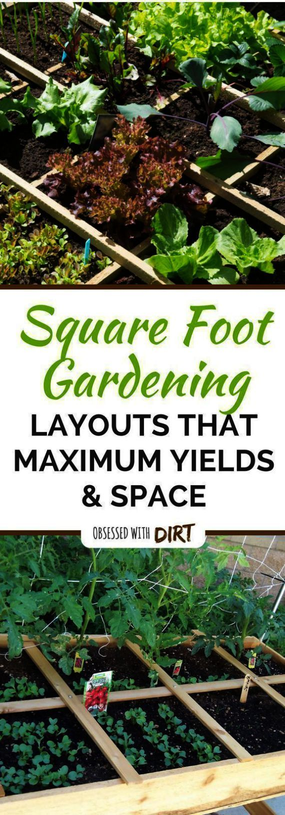 What You Can Do Yourself To Make Landscaping A Cinch in ...