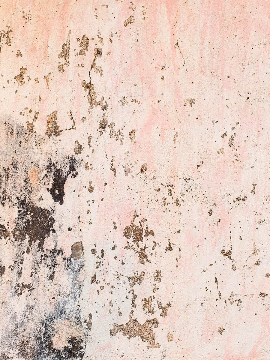 Toast  Cereal Goa  T H E  F O L D  Pink Texture, Rose -9063