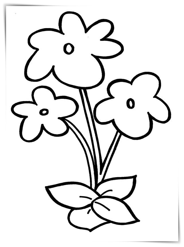 Dibujos Flores Grandes Para Imprimir A4 Paginas Para Colorear De Flores Flores Faciles De Dibujar Flores Para Dibujar
