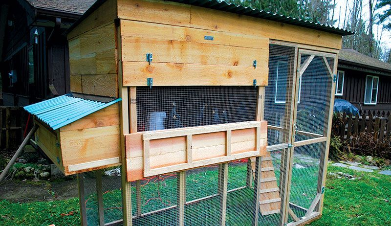 Plan A Coop Tour Of Local Chicken Hobbies for Adults in