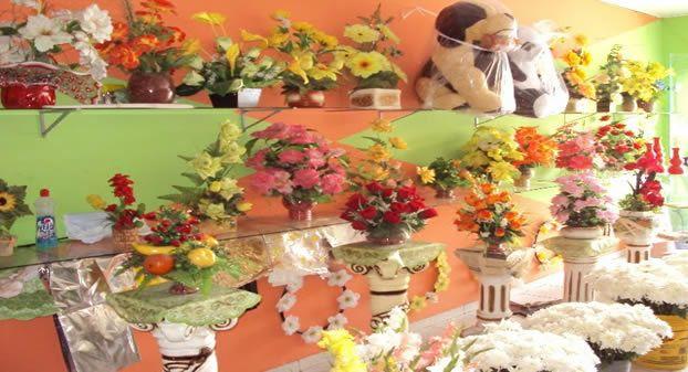 Floricultura em São Luís