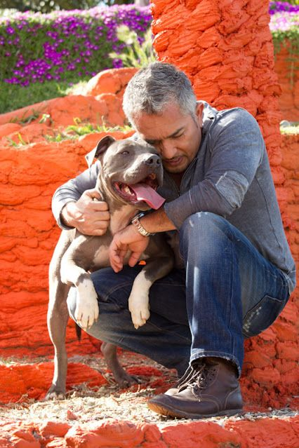 Caesar Milan Daddy Trained A Lot Of Out Of Control Dogs The