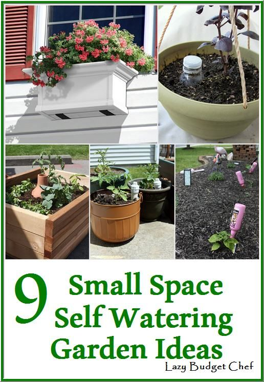 9 Small Space Self Watering Vegetable Garden Ideas For Lazy