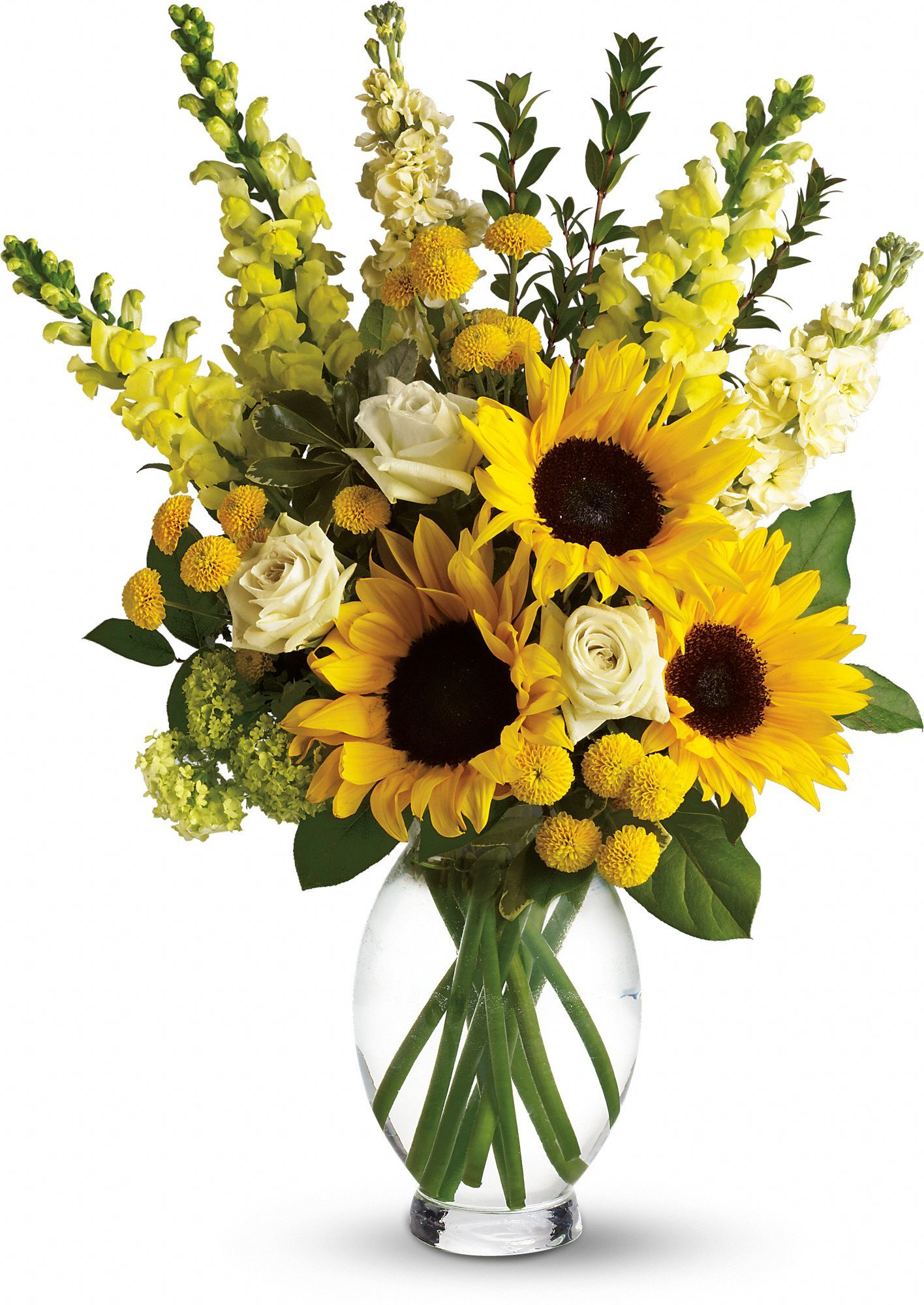 Sunflower Arrangements For Delivery : Here comes the sun bouquet by teleflora