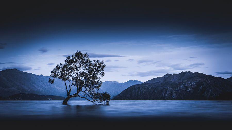 Loner by pxlorama - Photo 173735329 / 500px