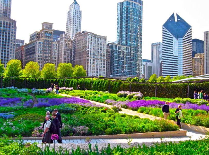 Lurie Garden Chicago Jpg 812 600 Millenium Park Millennium Park Beautiful Places To Visit