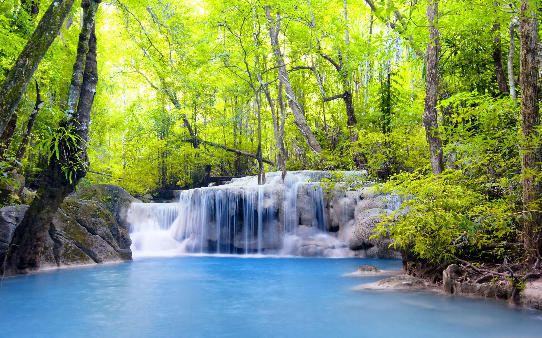fondo de pantalla paisajes tropicales en hq gratis para
