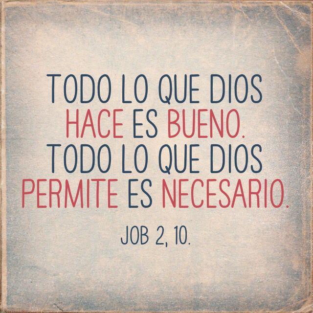 Reconocer la voluntad de Dios en todo lo que ocurre en nuestra ...