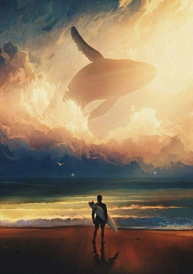 Пин от пользователя Barbara на доске whale   Мечта