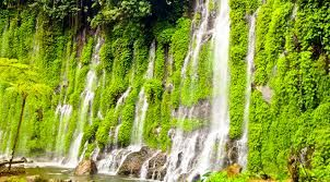 A falls surrounded by virgin forests. It located at Alamada, North Cotabato, Philippines