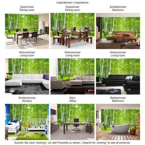 Details zu Vlies Fototapete Wald Sunny Birch Forest - WaldTapete - fototapete wald schlafzimmer