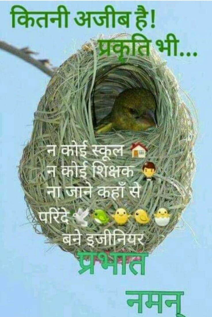 Pin by Shashikant Nebhwani on Good morning | Good morning ...