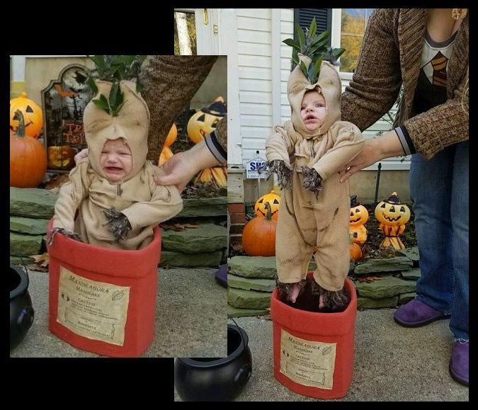 Mandrake Costume Harry Potter My Daughter S Halloween Costume 2016